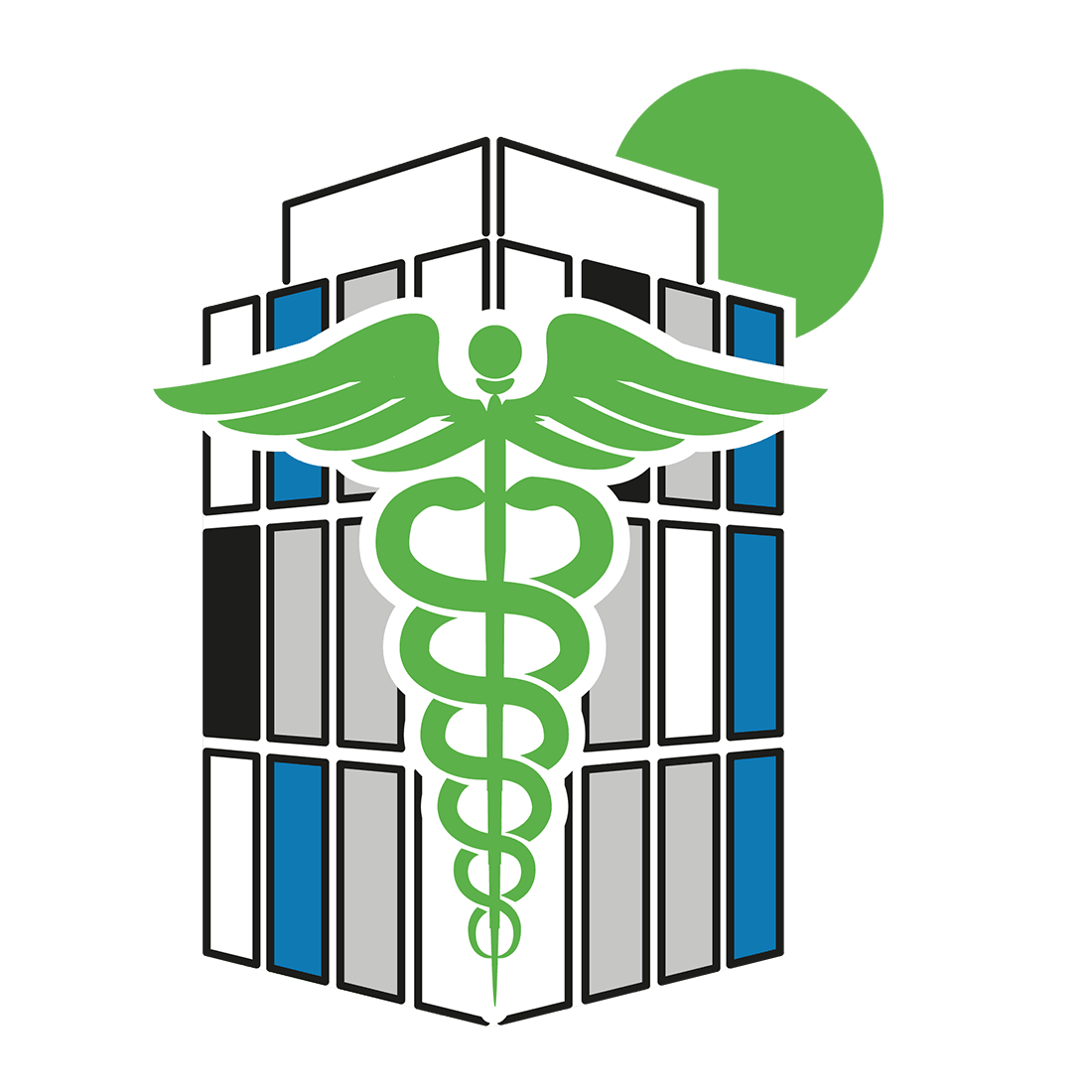 Health IT Icon